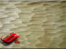 60*facade stone mold poost drakhti 40